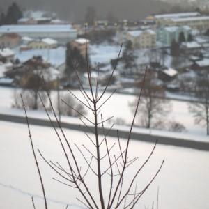 Kurpark Grafenau